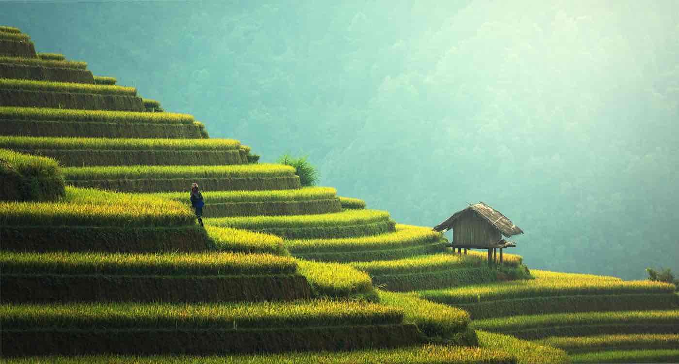 Ngành du lịch Việt Nam điều bạn cần biết