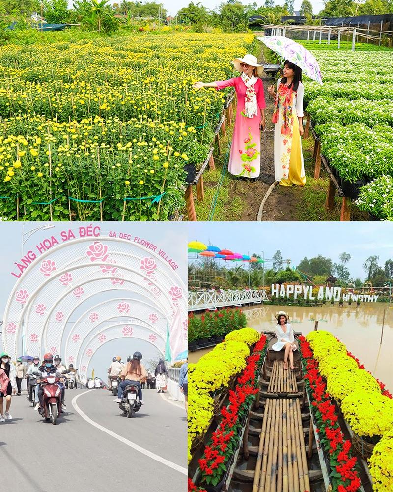 Lang hoa Sa Đéc thu hút khách du lịch mỗi dịp xuân về