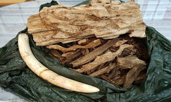 Trầm hương Việt Nam có hương thơm đặc biệt, giá bán cao